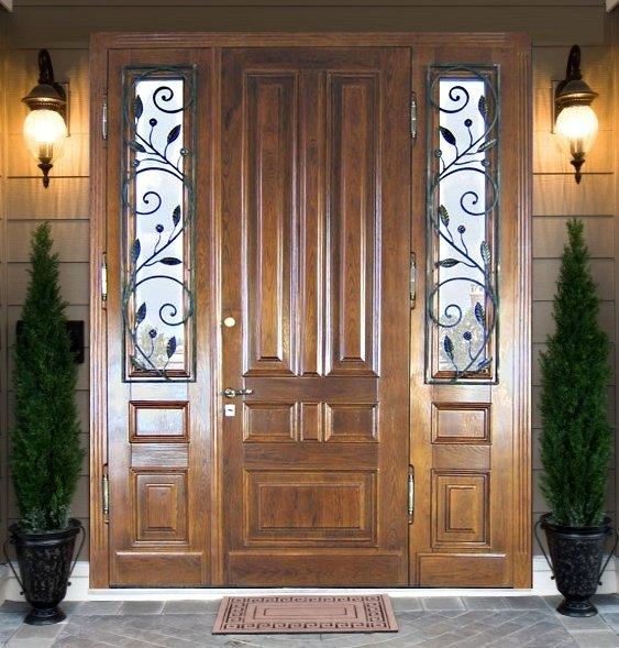 двери стальные металлические парадная
