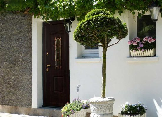 Где купить входные двери недорого?